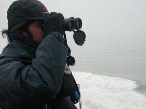 Paul Gill binoculars offshore